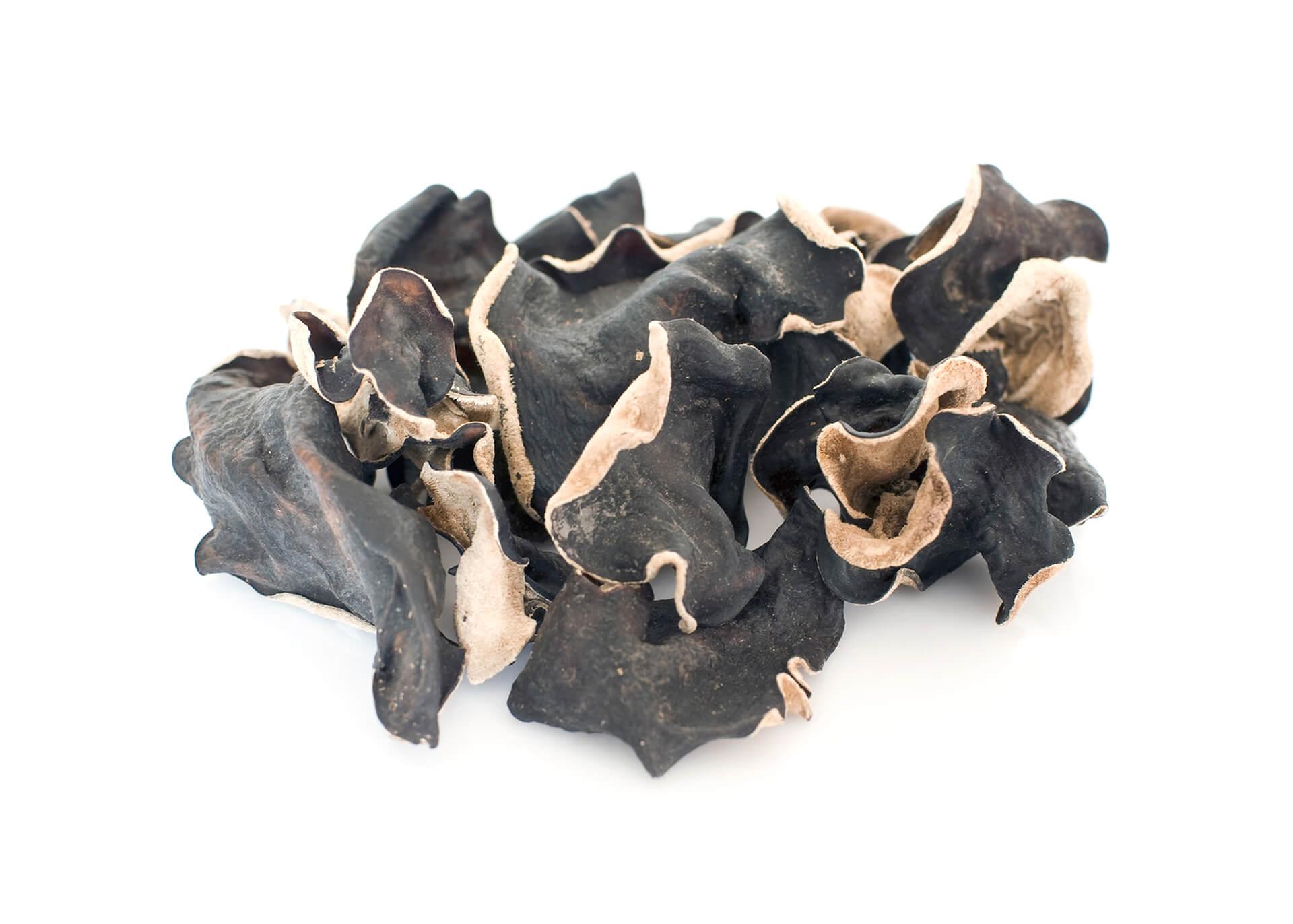 Black Fungus Cutout