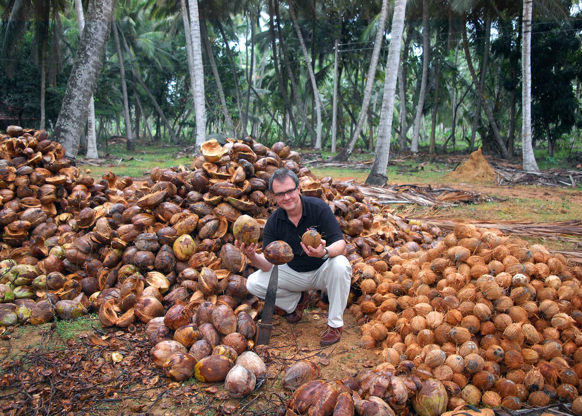 Kokosnussmilch Produktion